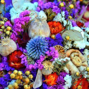 Décoration fleurs séchées et roses éternelles